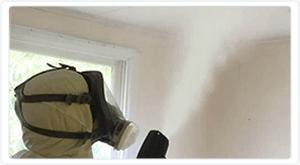 Property Decontamination Treatment